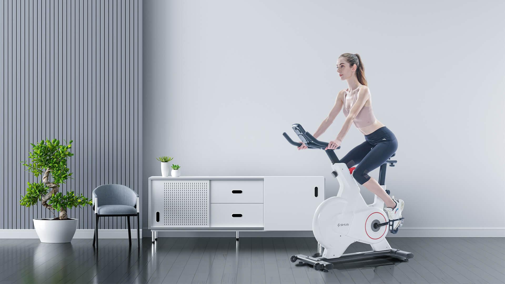 SHUA exercise bike